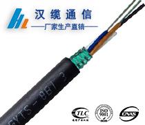 8芯管道光缆,8芯GYTS光缆