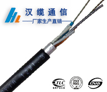 12芯GYTA光缆,12芯GYTA管道光缆